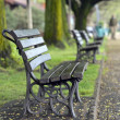 Benches in the Spring Park — Stock Photo