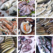 Set of images showcases the fishmarket — Stock Photo