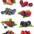 Set of berries — Stock Photo