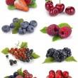 Set of berries — Stock Photo