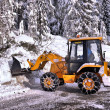 Clearing roads of snow and fallen tree — Stok fotoğraf