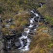 Mountain stream — Stock Photo #35238481
