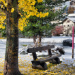 Bench in the park with yellow leaves and snow — Stock Photo