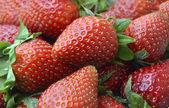 Strawberries — Zdjęcie stockowe