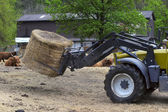 Tractor driven hay feeder for cattle — 图库照片
