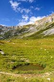 Small mountain lake — Stock Photo