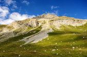Pintoresco paisaje de montaña — Foto de Stock