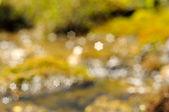 Bokeh. Mountain stream — Stock Photo