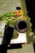 Topçu silahı — Stok fotoğraf
