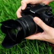 Stock Photo: Photographer shoots macro