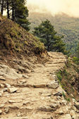 Nature du népal — Photo