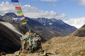 Buddhistiska prayful flaggor — Stockfoto