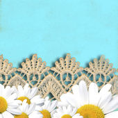Cheerful turquoise background with daisies — Stock Photo