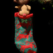Holy sock hanging from fir tree Christmas — Stock Photo