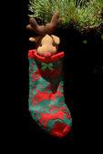 Heilige sok opknoping van spar boom van kerstmis — Stockfoto