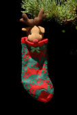 Holy sock hanging from fir tree Christmas — Foto de Stock