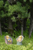 Baby teddy bears sitting in the forest — Stock Photo