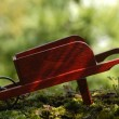 Wooden wheelbarrow — Stock Photo