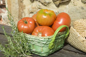 Red tomatoes from the garden — Stock Photo