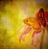 старая текстура ткани бумаги бабочка гранж — Стоковое фото