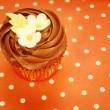 Royalty-Free Stock Photo: Chocolate cupcake decorated with flowers