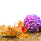 Bee pollen copy space — Stock Photo