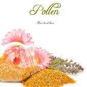 Bijenpollen in glazen pot en bloemen — Stockfoto