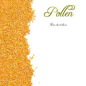 Bee pollen grains with copy space — Stock Photo