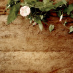 Romantic vintage background — Stock Photo #50155621