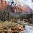 Zion National Park — Stock Photo #19083305