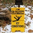 Stock Photo: Caution ice conditions