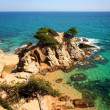 Royalty-Free Stock Photo: Typical Costa Brava landscape