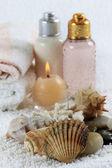 お風呂用アクセサリー — ストック写真