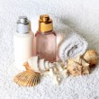 Accessories for a bath — Foto Stock