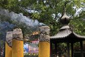 Tütsü duman — Stok fotoğraf