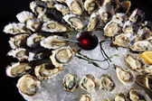 Opened oysters on ice — Stock Photo