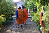 Cambodia monks  — Stock Photo