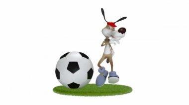 Zabawne 3d pies piłkarz. — Wideo stockowe
