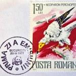 ROMANIA - CIRCA 1977: A stamp printed in Romania shows Egyptian vulture, circa 1977. — Stock Photo #11844586