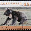 Stamp printed in Australishows koala — Stock Photo #12429054