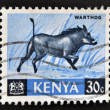 Stamp printed in Kenya shows warthog — Foto Stock
