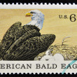 A Stamp printed in USA shows american blad eagle — Stock Photo