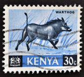 Stamp printed in Kenya shows warthog — Stock Photo