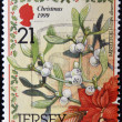 Stock Photo: A Christmas postage stamp printed in Jersey show mistletoe