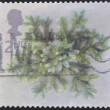 Stok fotoğraf: A stamp printed in Great Britain dedicated to Christmas, shows Spruce branches