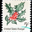 a christmas postage stamp printed in usa show holly — Stock Photo