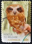 Znaczek wydrukowany w australii pokazuje ratunek sowa — Zdjęcie stockowe