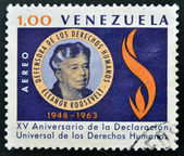 VENEZUELA - CIRCA 1963: A stamp printed in Venezuela shows Eleanor Roosevalt, circa 1963 — Foto de Stock