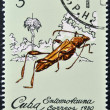 Stock Photo: Stamp printed in Cubdedicated to Entomofaun(Insect fauna) shows Odontocerjosemartii
