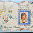 A stamp printed in Isle of Man shows a portrait of Diana of Wales with his son William, on his 21st birthday — Stock Photo